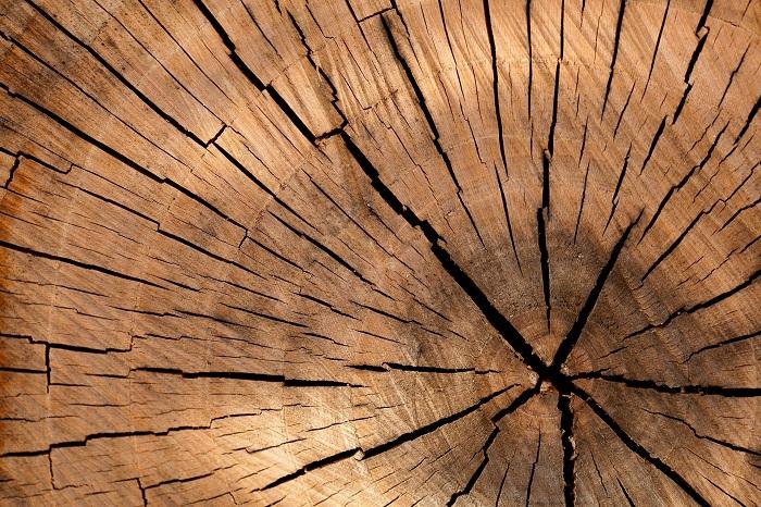 S impregnáciou dreva sa zvýši jeho unikátnosť