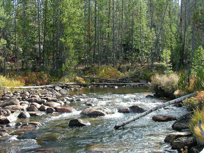 Rieky na Slovensku zoradené podľa dĺžky
